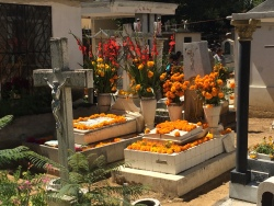 Decorated family graves.